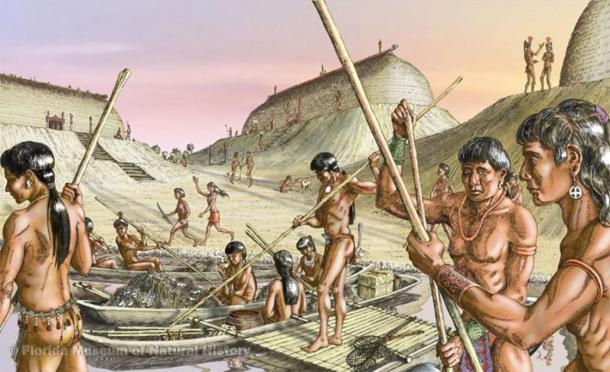 Artist's conception of Calusa people preparing for fishing in the estuary. (Florida Museum / Merald Clark)