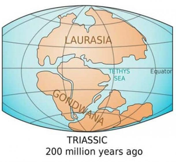 The continents Laurasia and Gondwana 200 million years ago.