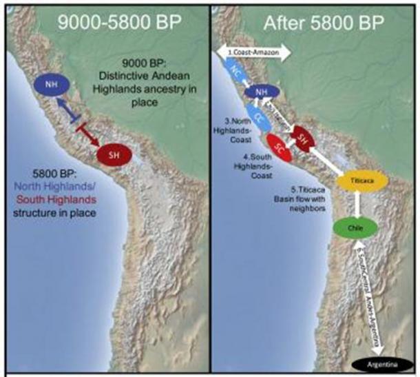 Después de 2000 BP, continuidad genética a través del ascenso y la caída de las culturas, pero cosmopolitismo y migración a larga distancia en la política inca. (Nakatsuka et al. 2020)