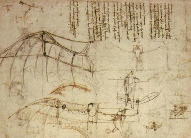 One of da Vinci's sketches of a flying machine shows close resemblance to the wings of a bat