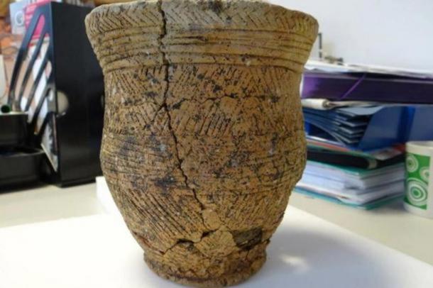 The decorated beaker found at the Achavanich Beaker burial.