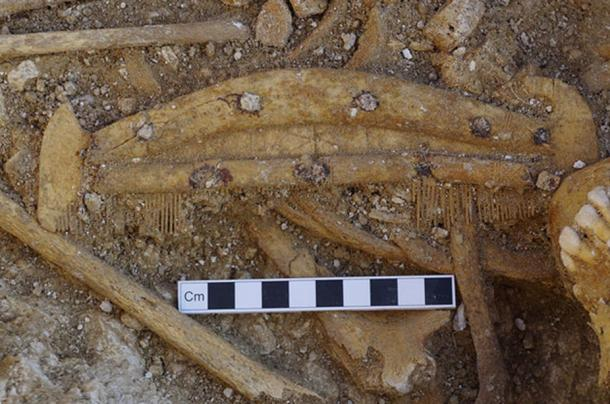 A decorated bone comb found during the excavation of a grave.