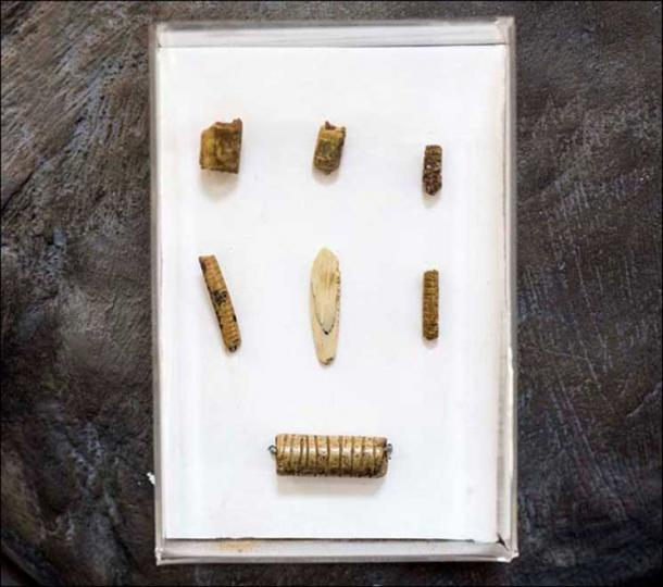 Handiwork made of bones and teeth, find in 11th layer of Denisova cave. Pictures: Anatoly Derevyanko, The Siberian Times