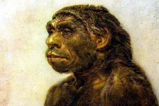 Earlier depiction of a Neanderthal.