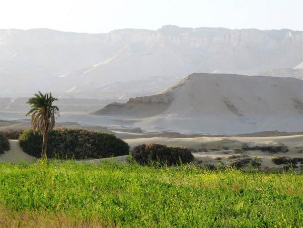 Egyptian deserts are a study in contrasts ranging from the green life of oases to the dry, inhospitable rocky cliffs. (P. Polkowski / Science in Poland)