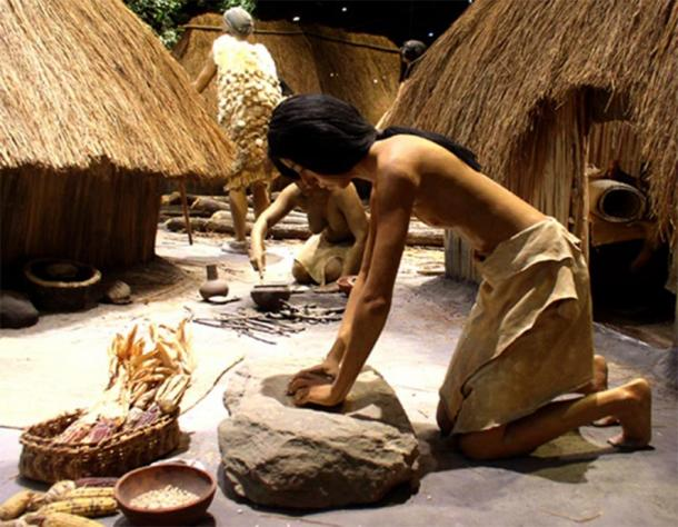 Top Image: A diorama showing a Mississippian culture woman grinding maize with a stone mortar, from the Cahokia site museum in Collinsville, Illinois. The ancient metropolis grew as people began cultivating corn. Source: Herb Roe/CC BY SA 3.0