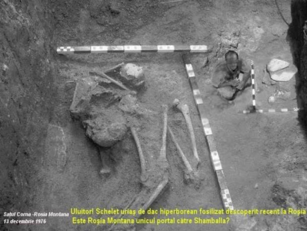 The discovery of a skeleton that measures 10 meters or 32.8 Feet.