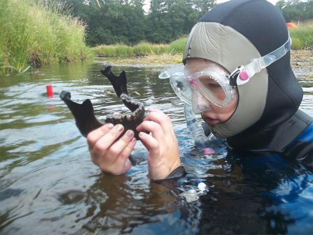 Discovery of a mandible in the Tollense river. (©: Ronald Borgwardt / Tollense Valley Project)