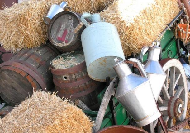 Donkey milk is still used throughout the world for its many health benefits