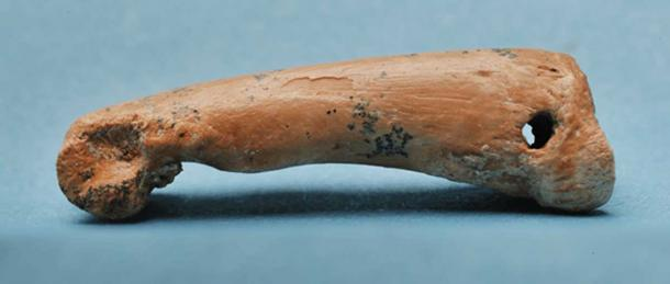 A drilled and perforated finger bone from a bear cuscus. The hole at one end of the bone formerly bore a string, while wear marks on the ornament show that it repeatedly rubbed against human skin or clothing. These suggest the perforated bone was suspended for use as a 'pendant' or similar jewellery object. Luke Marsden, Author provided