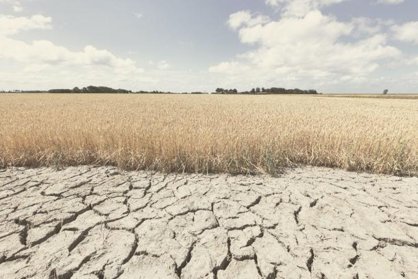 Drought has already been found to be a contributing factor to the demise of Akkadian Empire. (Bas Meelker / Adobe Stock)