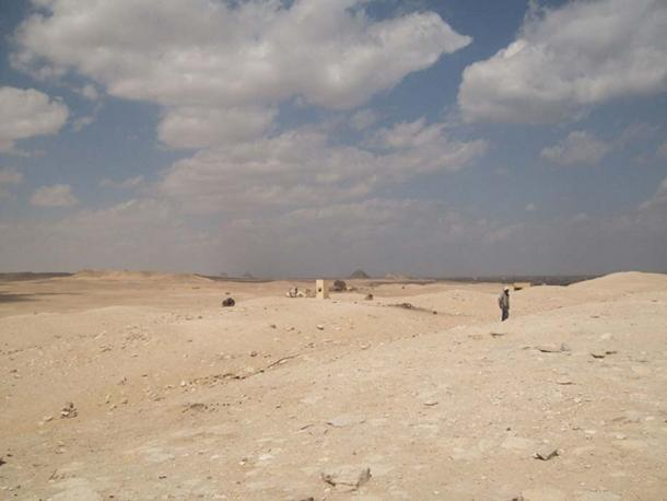 The dry landscape of the sprawling necropolis, with the step pyramid of Djoser in the distance, may explain the children's inflamed sinuses.