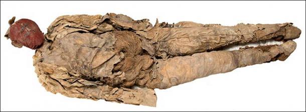 En la tumba también había dos muñecos llenos, una especie de maniquí hecho de cuero lleno de hierba fuertemente retorcida. (© Museo Estatal del Hermitage. Vladimir Terebenin, Pavel Demidov / The Siberian Times)