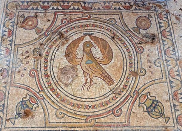 Eagle, part of the mosaics in the Byzantine church. (Assaf Peretz / Israel Antiquities Authority)
