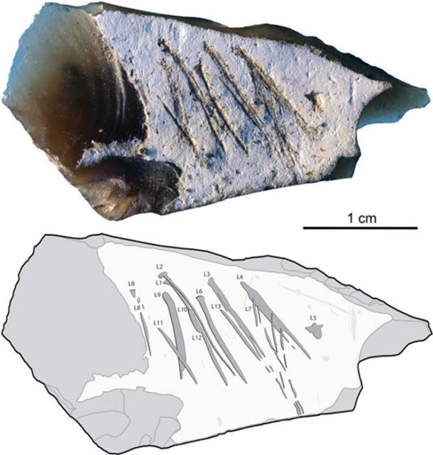 Photo (top) and tracing (bottom) of engraved flint flake. Engraved lines are indicated by dark-grey areas outlined in black, surface damage by light gray areas, flake scars by gray lines.Image: Majkic et al (2018)/ (CC BY 4.0)