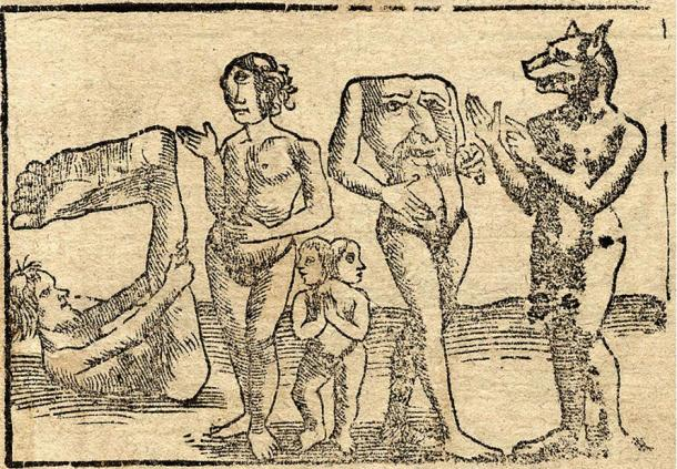 An engraving showing (from left to right) a monopod or sciapod, a female cyclops, conjoined twins, a blemmye, and a cynocephali, 1544