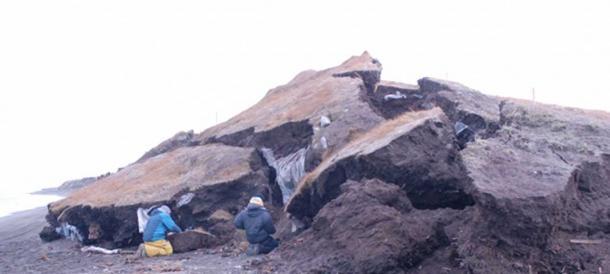 Photo of 2014 excavations at the Walakpa site near Utqiaġvik, Alaska.
