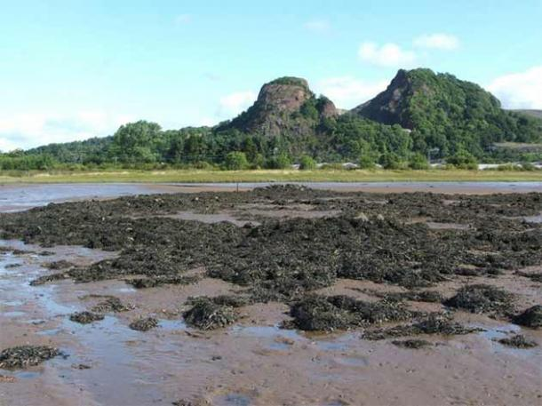 Why is it that more recent excavations have unearthed similar artifacts at Dumbuck Crannog? (Lairich Rig)