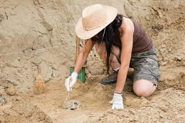 Many excavations are facing cutbacks (Microgen / Adobe Stock)