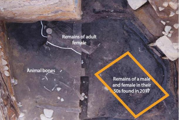 The remains of the adult female were discovered just 50 centimeters (1.64 feet) above the remains found in 2017. (Cultural Heritage Administration of Korea)
