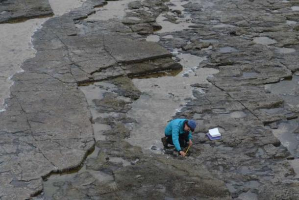 A field researcher involved in the measurement and mapping of the site. (SWNS)