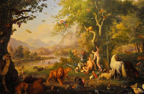 What Happened in Eden? Alternative Translation Tells a Very Different Story
