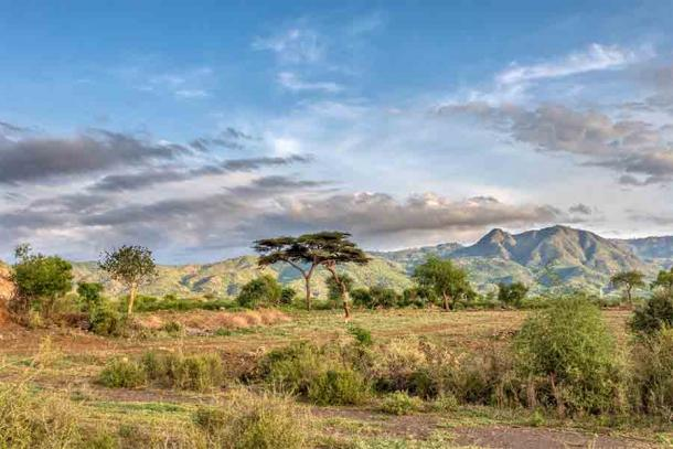 The landscape of Ethiopia today. During the first African migrations by Homo sapiens heading north to Europe or west to the Middle East, Ethiopia and East Africa in general were areas where the climate fluctuated frequently.
