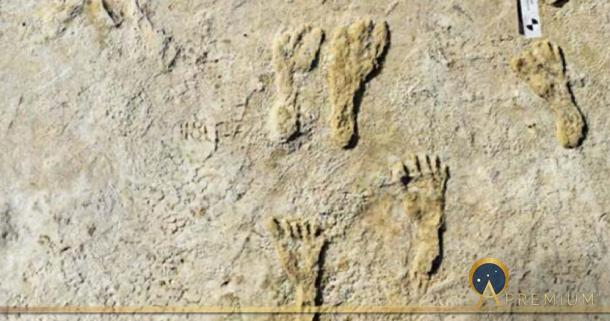 This undated photo made available by the National Park Service in September 2021 shows fossilized human footprints at the White Sands National Park in New Mexico. ( National Parks Service )