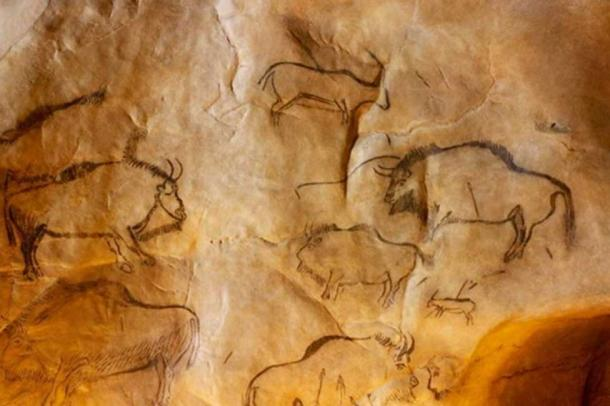 Ancient Cave Art Reveals Origin of Mysterious Bison Hybrid