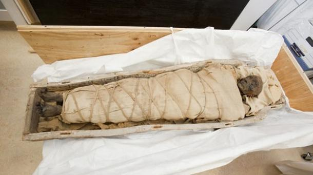 Ancient Egyptian mummy underwent ritual healing for the afterlife ...