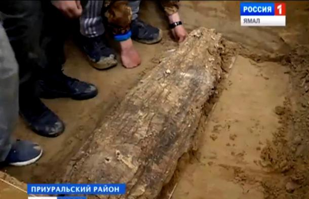 Ancient mummy unearthed from lost medieval civilization near Arctic, claim scientists