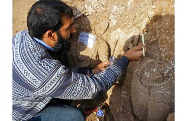 500 ancient artifacts uncovered at the remarkable Bhamala Archaeological Complex in Pakistan
