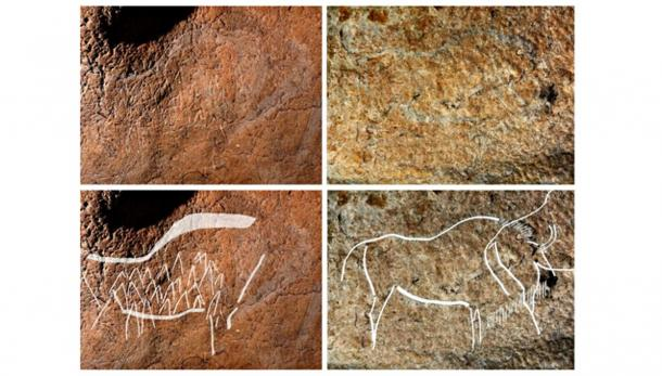 More Than 70 Engravings and Paintings from 14,000 Years Ago Discovered in a Spanish Cave
