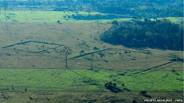 Mysterious Geoglyphs of Amazonia May Show Ancient Humanity Had an Major Impact on Rainforest