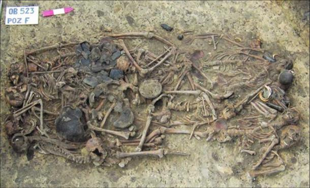 5000-Year-Old Family Found In Mass Burial Was Brutally Murdered