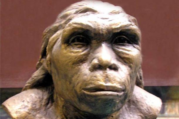 dating sapiens New fossils and dating put a face on the first of our kind.