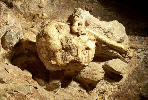 Little Foot skull still in place in the Sterkfontein cave.
