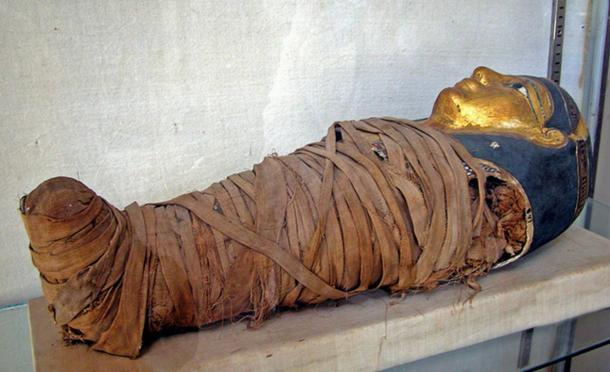Egyptian Child Mummy Dumped in Garbage in France, Now ... Real Egyptian Baby Mummies