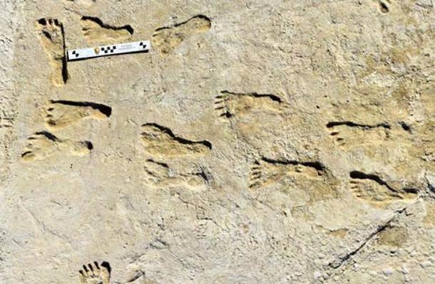 The ancient New Mexico footprints found at White Sands National Park, which could be dated because the footprints were embedded with native plant seeds. Source: Bennett et al. / Science