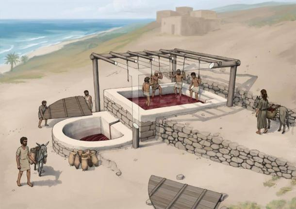 Reconstruction of the wine press at Tell el-Burak, looking from the south-east. Source: Tell el-Burak Archaeological Project; drawing by O.Bruderer; Antiquity