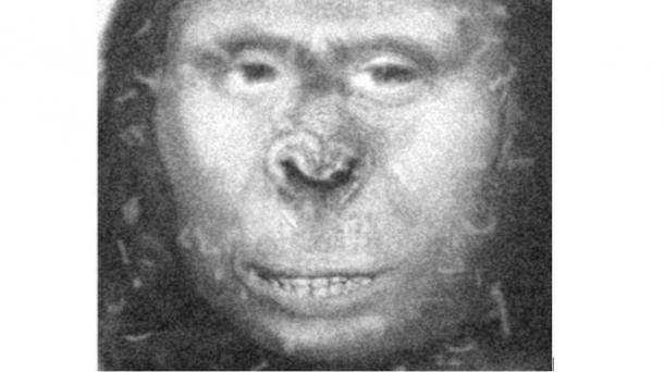 DNA Evidence Suggests Captured Russian Ape Woman Might Have been Subspecies of Modern Human