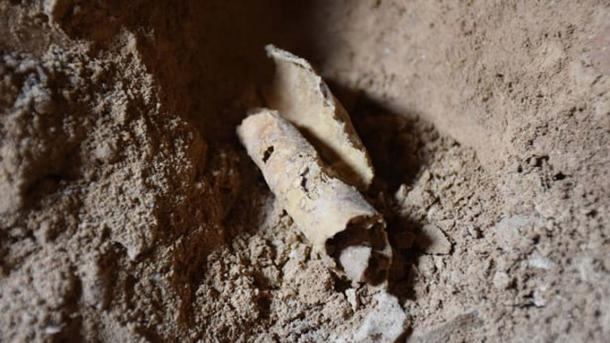 After 60 Years, Archaeologists are Thrilled to Find a Twelfth Dead Sea Scroll Cave
