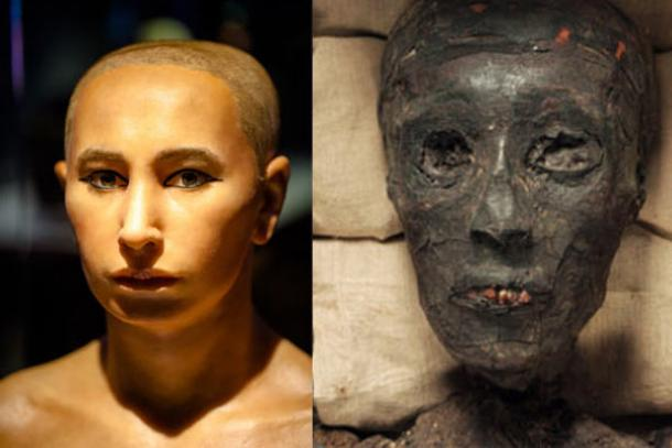 tutankhamen s mysterious death Pharaoh tutankhamen's mysterious death & curse funny frog  করতে পারেনি বিজ্ঞান  5 mysterious photos.