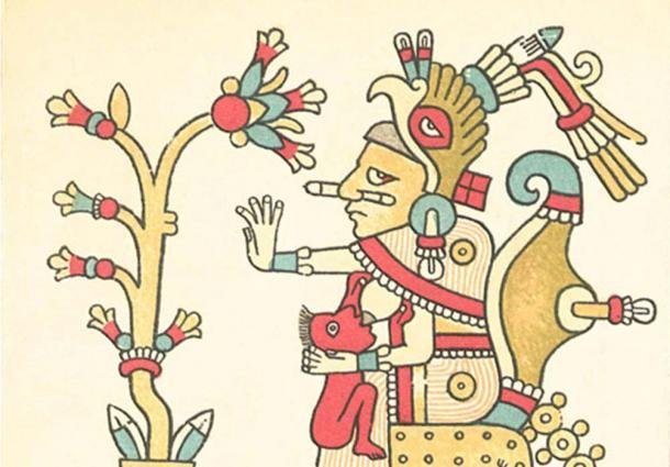 Xochiquetzal, with flower (Codex Fejérváry-Mayer, page 29)