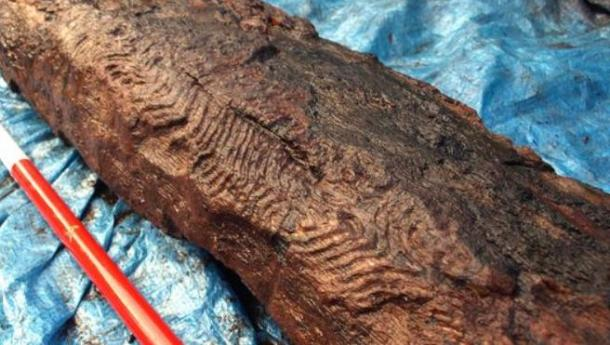 6000 year old ancient decorative wood carving ancient origins - Decorative Wood