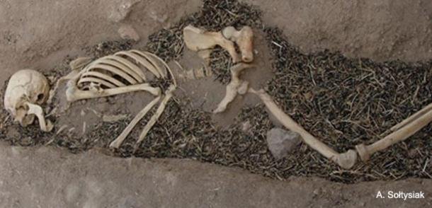 Unravelling The Mystery Of Disease In Ancient Mesopotamia