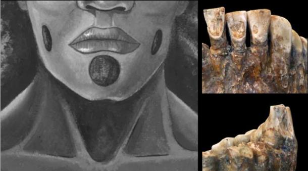 Teeth of OH1 (John C Willman) and the proposed facial piercings. (Lou-Octavia Mørch)