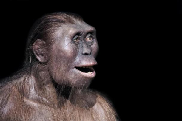 Depiction of an ancient human smile