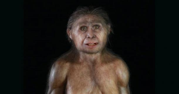 New theory on Hobbit species has drastic implications for Out-of-Africa theory