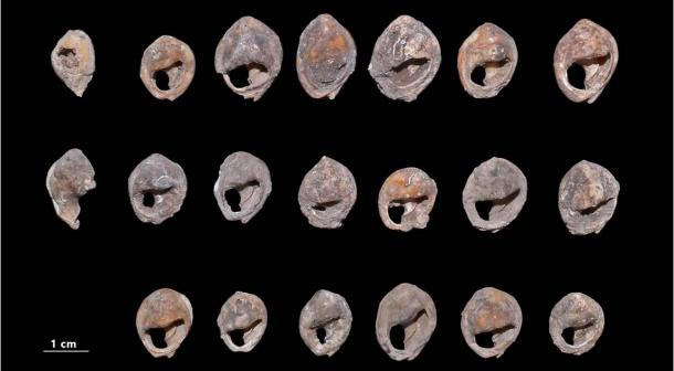 World's Oldest Jewelry Excavated at a Moroccan Cave
